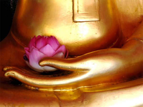 buddha-with-flower
